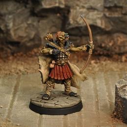 Archer hyène I