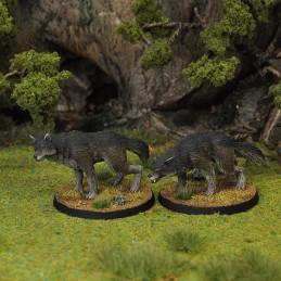Grands loups