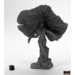 44050 Reine champignon