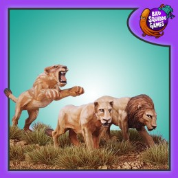 Lion et lionnes (3)