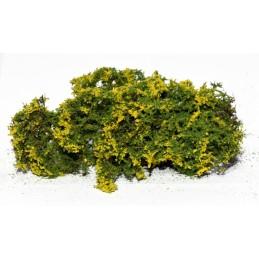 Buisson fleuri (jaune)