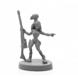 49027 Chasseuse andromedan