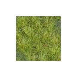 GL-027 Touffes vert clair...