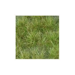 GL-028 Touffes vert moyen...