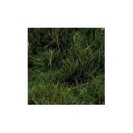 GL-029 Touffes vert sombre...
