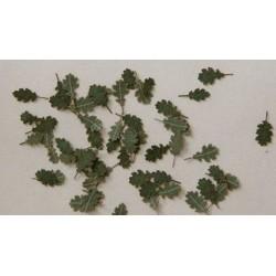 L3002 feuilles de chêne vertes (80 pcs environ)
