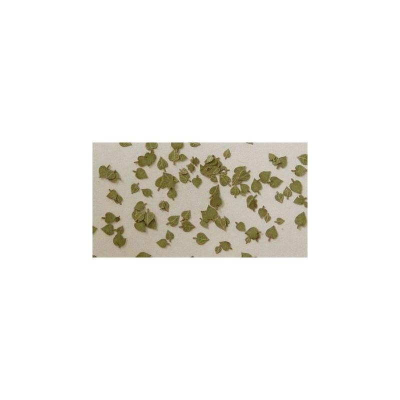 L3003 feuilles de citronnier (100 pcs environ)