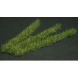 GL037 Bandes herbeuses vert foncé XL