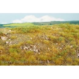 F723 Steppe pierreuse fin d'été (18 x 28cm)