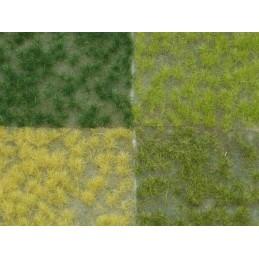 F901 Touffes 4 couleurs