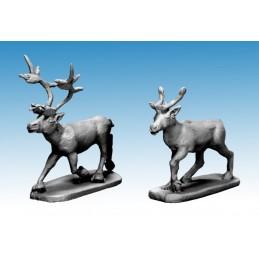 Caribous/rennes