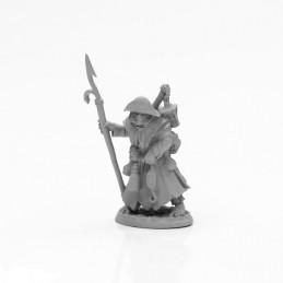 04019 Cultiste pirate