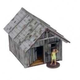 Grande cabane/dépendance