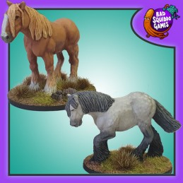 Gros chevaux lourds