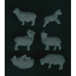 Moutons (6)