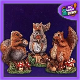 Ecureuils géants