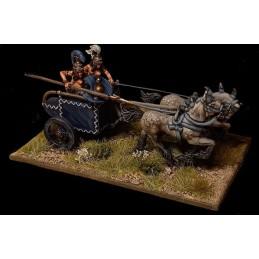 Chariot de guerre amazone...