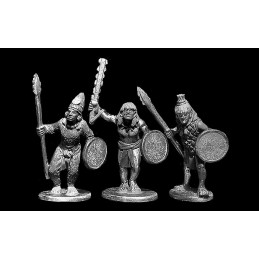 Guerriers des clans I