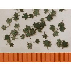 L3001 Feuilles d'érable vertes (60 pcs environ)