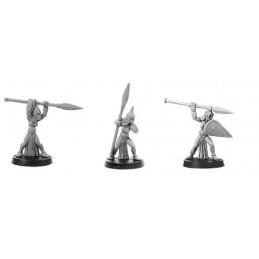 CLT-156 Gardiennes elfes