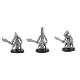 CLT-425 Guerriers orcs III