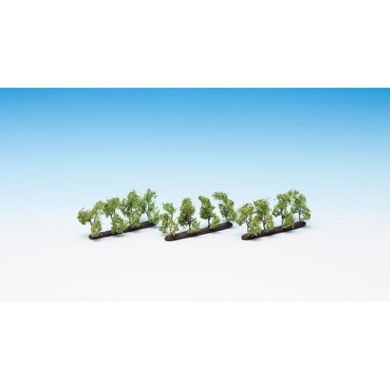 21530 Petits arbres de plantations
